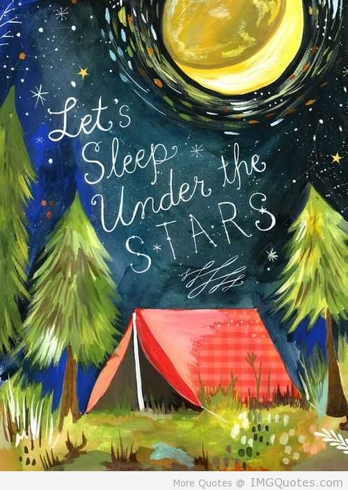 Let's Sleep Under The Stars. ~ Camping Quotes