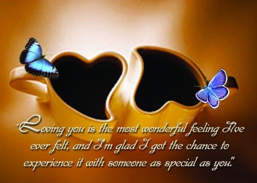 """ Loving You Is The Most Wonderful Feeling I've Over Felt, And I'm Glad I Got The Chance To Experience It With Someone As Special As You "" ~ Butterfly Quotes"