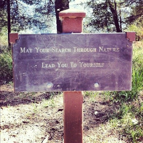 May Your Search Through Nature Lead You To Yourself. ~ Camping Quotes