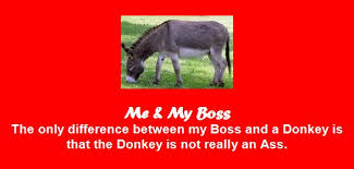 Me & My Boss, The Only Difference Between My Boss And A Donkey Is That The Donkey Is Not Really An Ass.