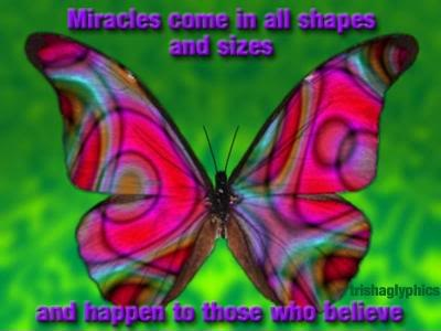 Miracles Come In All Shapes And Sizes And Happen To Those Who Believe. ~ Butterfly Quotes