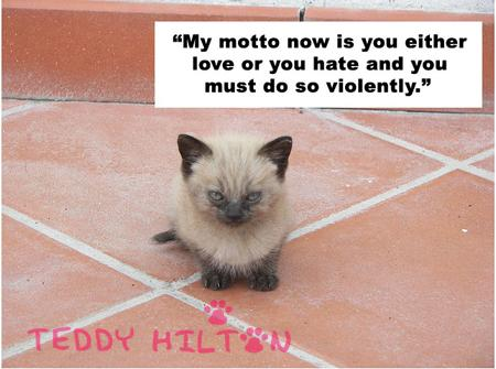 Cat Quotes Pictures and Cat Quotes Images with Message - 47
