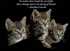 No Matter How Much The Cats Fight, There Always Seem To Be Plenty of Kittens. - Abraham Lincoln
