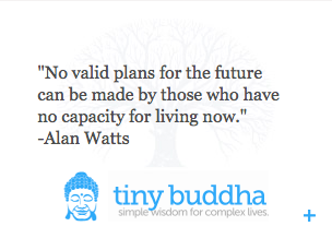 """"""" No Valid Plans For The Future Can Be Made By Those Who Have No Capacity For Living Now """"  Alan Watts - Tiny Buddha"""