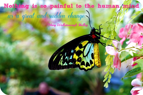 Nothing Is So Painful To The Human Mind As Is Great And Sudden Change. - Mary Wollstonecraft Shelley