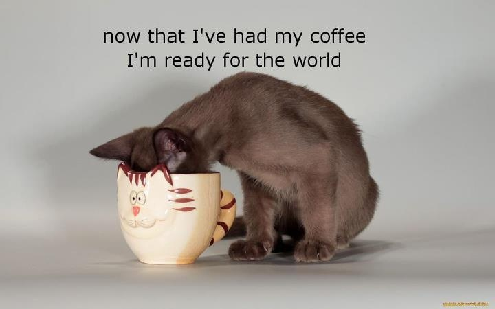 Now That I've Had My Coffee I'm Ready For The World