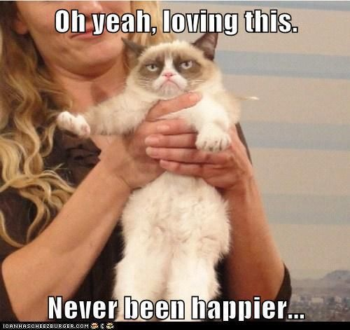 Oh Yeah, Loving This. Never Been Happier. ~ Cat  Quotes