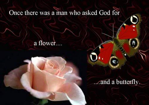 Once There Was A Man Who Asked God For A Flower And A Butterfly.