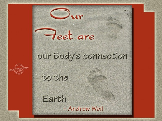 Our Feet Are Our Body's Connection To The Earth . - Andrew Weil
