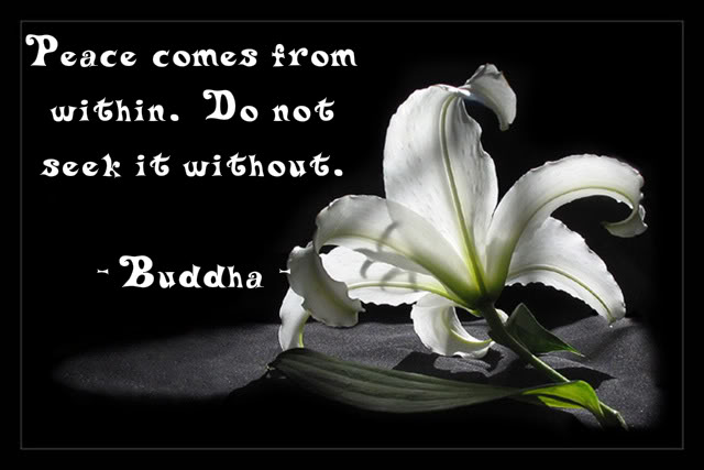Please Comes From Within. Do Not Seek It Without. - Buddha