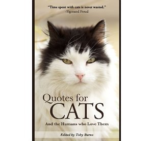 Quotes For Cats…