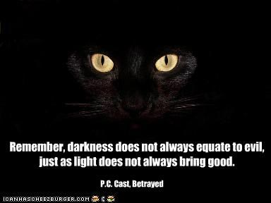 "Remember, Darkness Does Not Always Equate To Evil, Just As Light Does Not Always Bring Good "" - P.C. Cast, Betrayed ~ Cat Quotes"