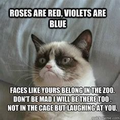 Roses Are Red, Violets Are Blue. Faces Like Yours Belong In The Zoo. Don't Be Mad I Will be There Too. Not In The Cage But Laughing At You. ~ Cat Quotes