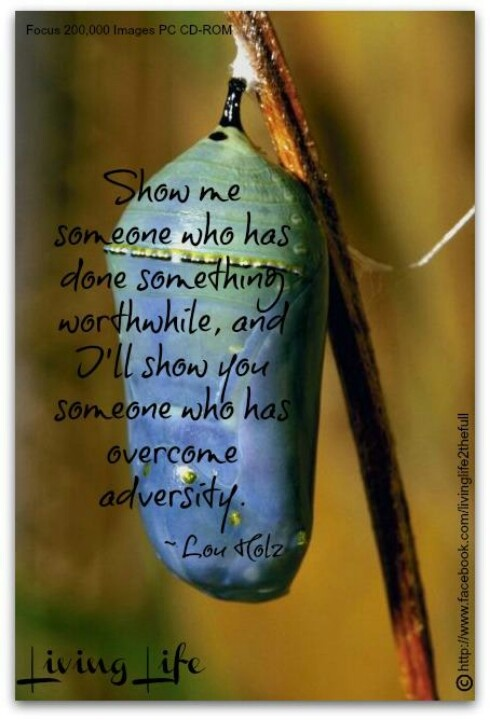 Show Me Someone Who Has Done Something Worthwhile, And I'll Show You Someone Who Has Overcome Adversity. - Lao Tzu