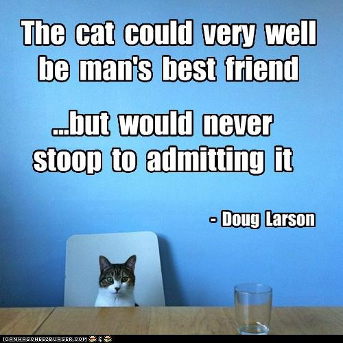 """The Cat Could Very Well Be Man's Best Friend But Would Never Stoop To Admitting It """" - Doug Larson"""