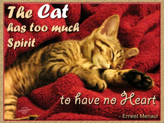 The Cat Has Too Much Spirit To Have No Heart. - Ernest Menaul