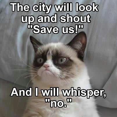 "The City Will Look Up And Shout ""Save Us"" And I Will Whisper, ""No"". ~ Cat Quotes"