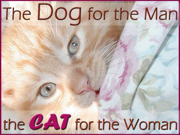 The Dog For The Man The Cat For The Woman.