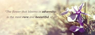 """"""" The Flower That Blooms In Adversity Is The Most Rare And Beautiful """""""