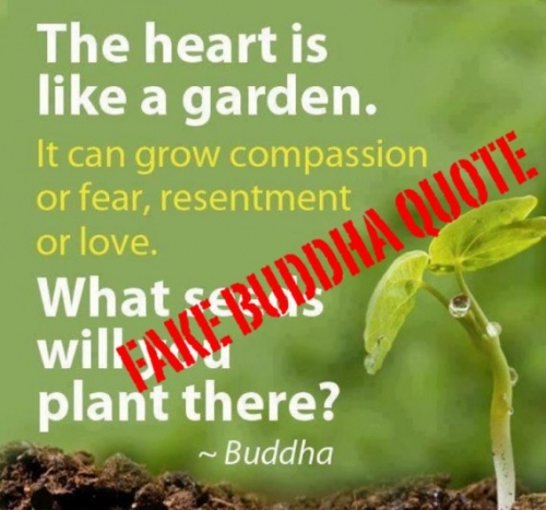The Heart Is Like A Garden. It Can Grow Compassion Or Fear, Resentment Or Love. What Seeds Will You Plant There. - Buddha