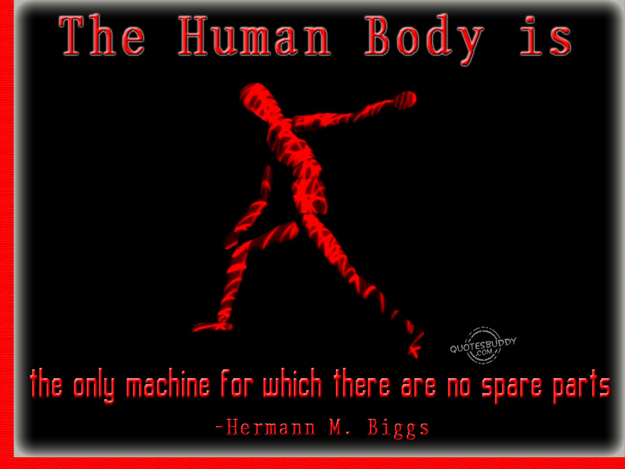 The Human Body Is The Only Machine For Which There Are No Spare Parts. - Hermann M. Biggs