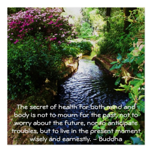 The Secret Of Health For Both Mind And Body Is Not To Mourn For The Past, Not To Worry About The Future, Nor To Anticipate Troubles, But To Live In The Present Moment Wisely And Earnestly. - Buddha