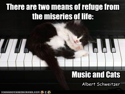There Are Two Means Of Refuge From The Miseries of Life, Music And Cats.