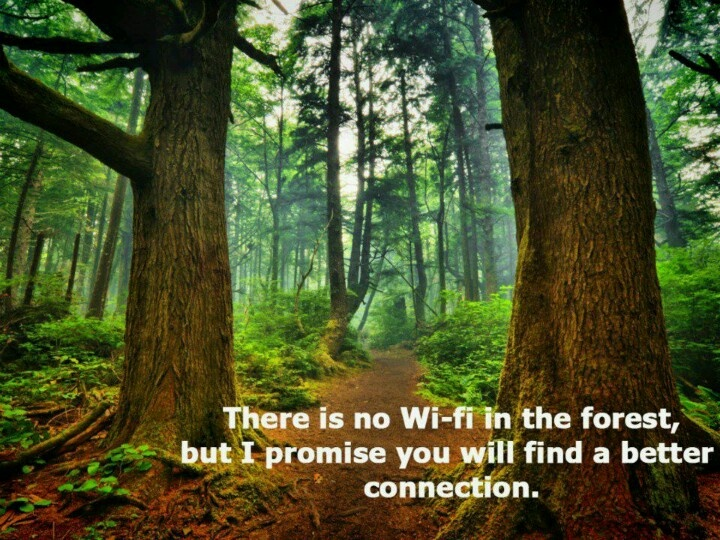 There Is No Wi-Fi In The Forest, But I Promise You Will Find A Better Connection. ~ Camping Quotes