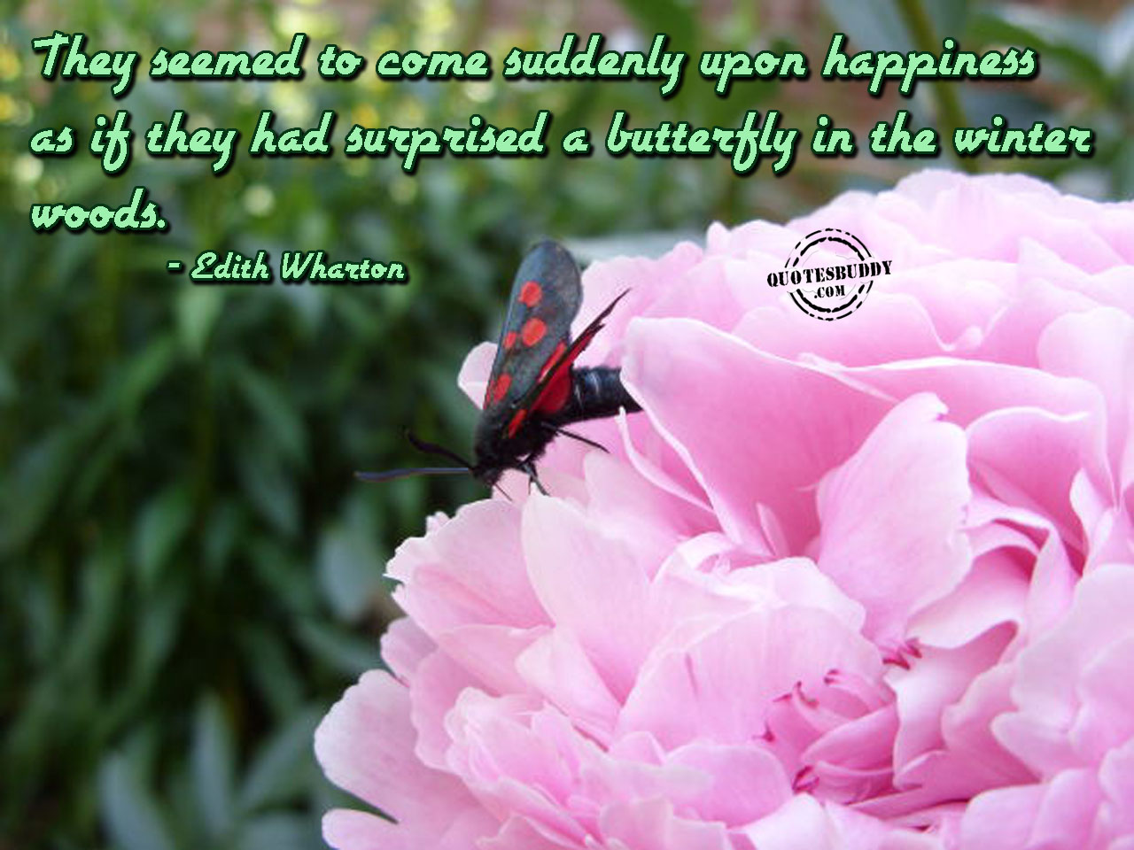 They Seemed To Come Suddenly Upon Happiness As If They Had Surprised A Butterfly In The Winter Woods. - Edith Wharton