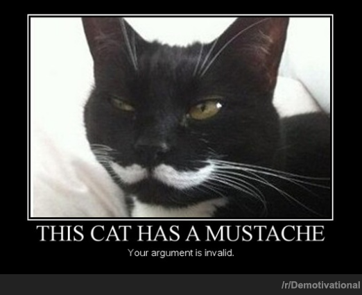 This Cat Has A Mustache.