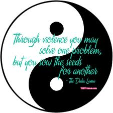Through Violence You May Solve One Problem, But You Sow The Seeds For Another. ~ Buddhist Quotes
