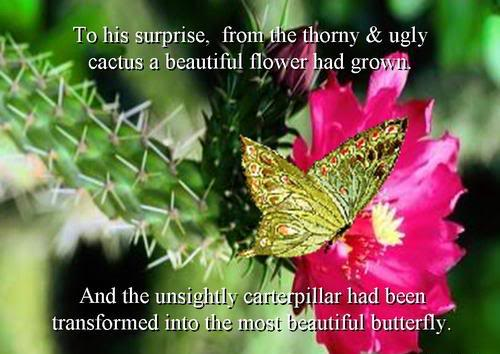To His Surprise, From The Thorny & Ugly Cactus A Beautiful Flower Had Grown. And The Unsightly Caterpillar Had Been Transformed Into The Most Beautiful Butterfly.