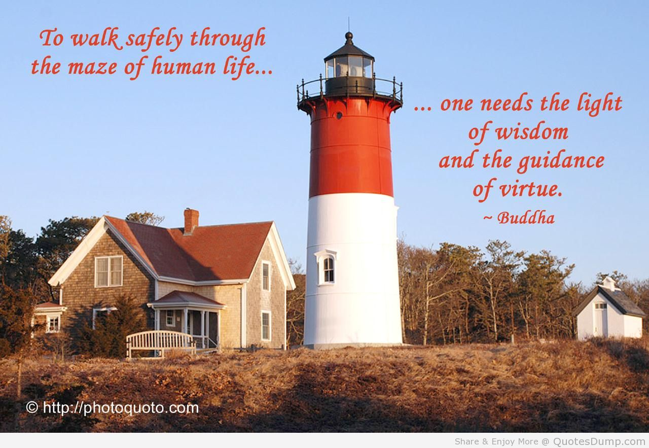 To Walk Safely Through The Maze Of Human Life, One Needs The Light Of Wisdom And The Guidance Of Virtue. - Buddha