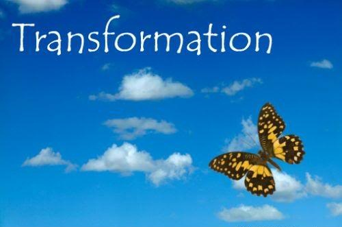 Transformation. ~ Butterfly Quote