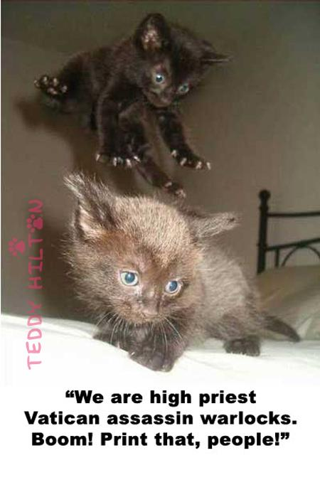 """"""" We Are High Priest Vatican Assassin Warlocks. Boom! Print That, People """" ~ Cat Quotes"""