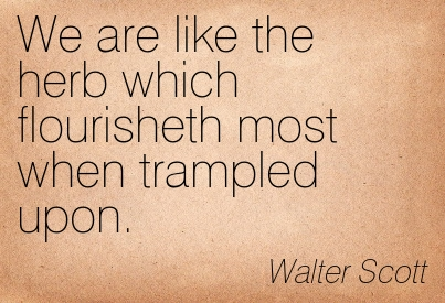 We Are Like The Herb Which Flourisheth Most When Trampled Upon. - Walter Scott ~ Adversity Quotes