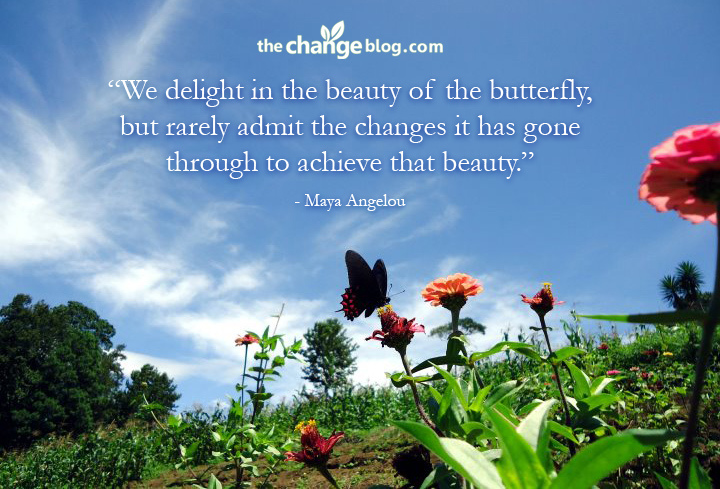 """"""" We Delight In The Beauty Of The Butterfly, But Rarely Admit The Changes It Has Gone Through To Achieve That Beauty """" - Maya Angelou"""