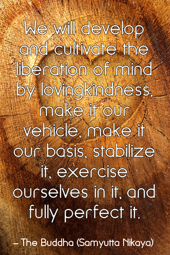 We Will Develop And Cultivate The Liberation Of Mind By Loving Kindness, Make It Our Vehicle, Make It Our Basis, Stabilize It, Exercise Ourselves In It, And Fully Perfect It. -  The Buddha