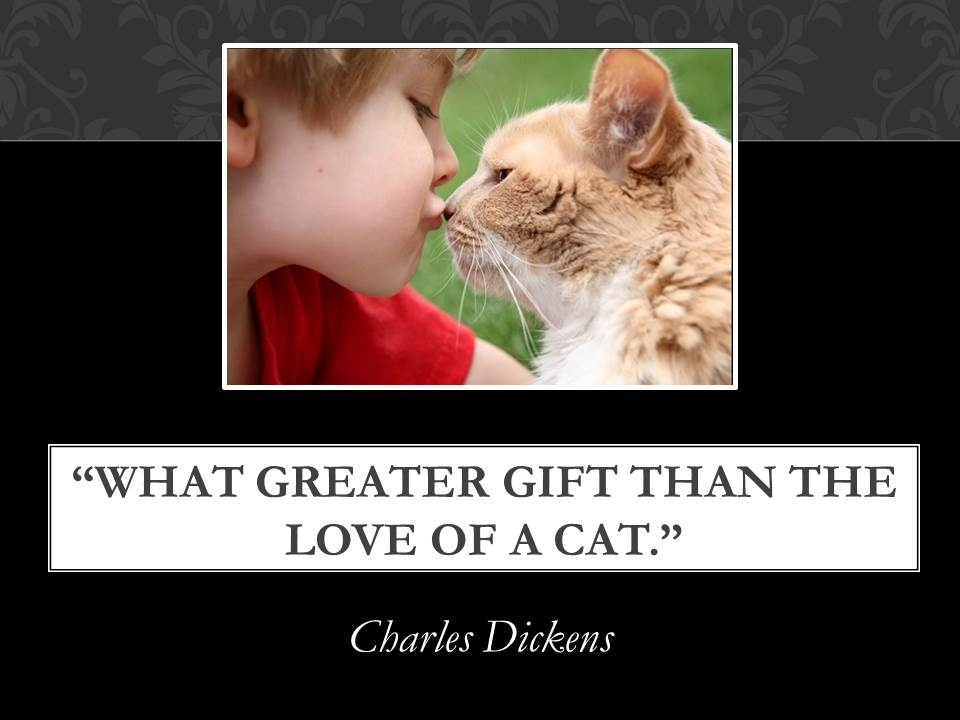 """ What Greater Gift Than The Love Of A Cat "" - Charles Dickens"