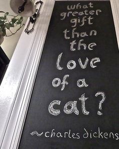 What Greater Gift Than The Love Of Cat - Charles Dickens