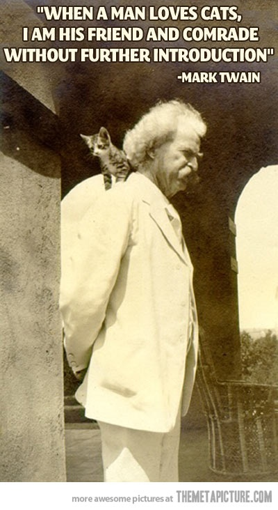""""""" When A Man Loves Cats, I Am His Friend And Comrade Without Further Introduction """" - Mark Twain"""