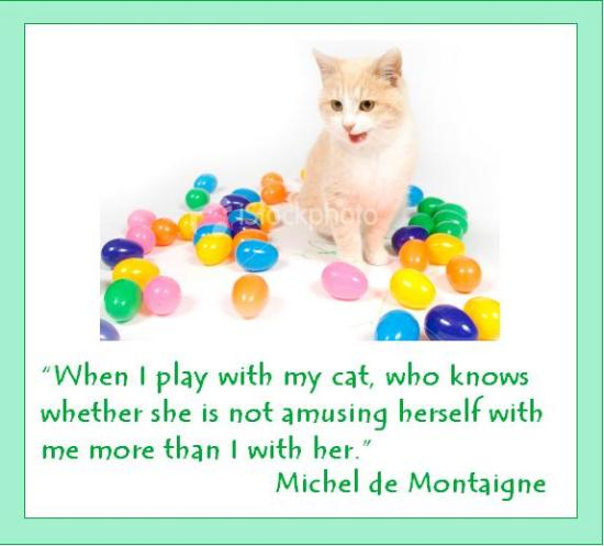""""""" When I Play With My Cat, Who Knows Whether She Is Not Amusing Herself With Me More Than I With Her """" - Michel De Montaigne"""