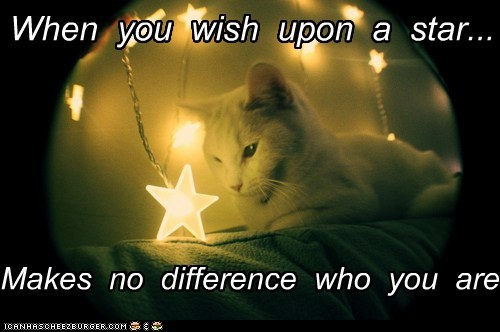 When You Wish Upon A Star, Makes No Difference Who You Are. ~ Cat Quotes