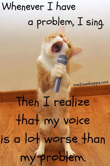 Whenever I Have A Problem, I Sing. Then I Realize That My Voice Is A Lot Worse Than My Problem. ~ Cat Quotes