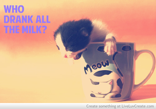 Who Drank All The Milk. ~ Cat Quotes
