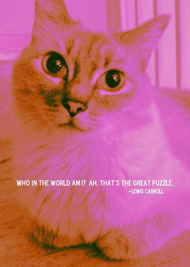Who In The World Am I, Ah, That's The Great Puzzle. - Lewis Carrol ~ Cat Quotes