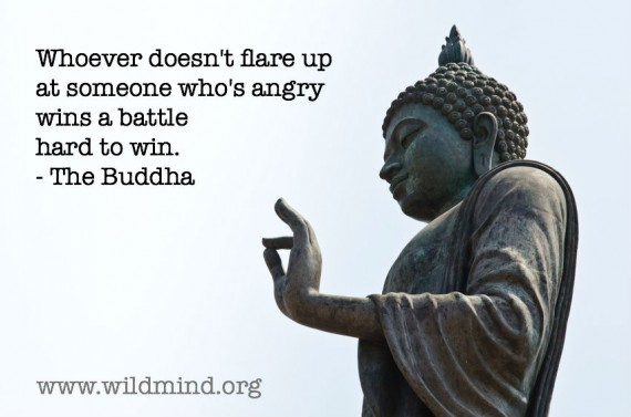 Whoever Doesn't Flare Up At Someone Who's Angry Wins A Battle Hard To Win. - The Buddha