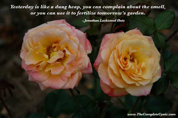 Yesterday Is Like A Dung Heap, You Can Complain About The Smell, Or You Can Use It To Fertilize Tomorrow's Garden. - Jonathan Lockwood Huie