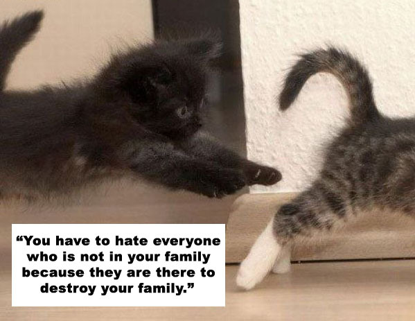 """ You Have To Hate Everyone Who Is Not In Your Family Because They Are There To Destroy Your Family "" ~ Cat Quotes"