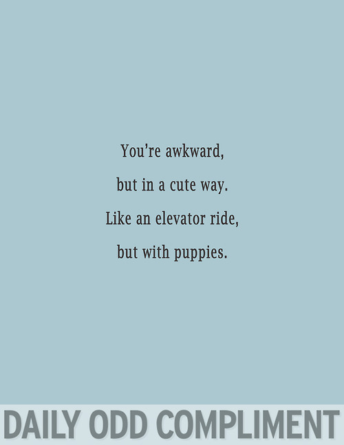 You're Awkward But In a Cute Way. Like An Elevator Ride, But With Puppies